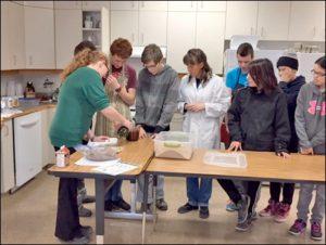 bokashi-composting-method-explored-1